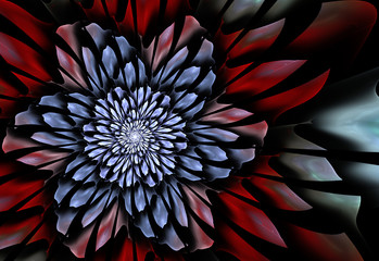 Wall Mural - Abstract fractal flower