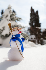 Little cute snowman