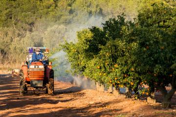 Agricultor Fumigando El Huerto Con Tractor
