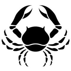 Black Cancer Zodiac Star Sign