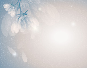 Snowy flowers / Romantic winter background