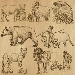 Animals around the World (set no. 8)