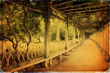 Garden - Hangzhou - China