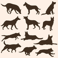 vector set of dogs silhouettes