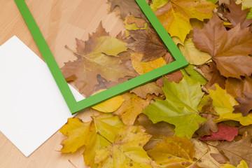 Bilderrahmen für Blätter zur Dekoration