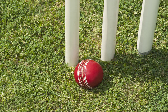 High angle view of a cricket ball near stumps