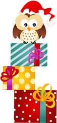 Owl on Christmas Gifts