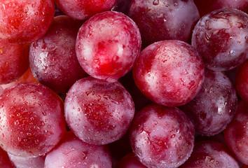 Fototapete - Fresh red grapes macro. Food background