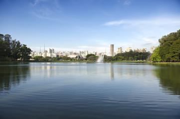 Sao Paulo Brazil City Skyline at Ibirapuera Park