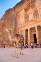 Visite de Petra (Tresory Facade)