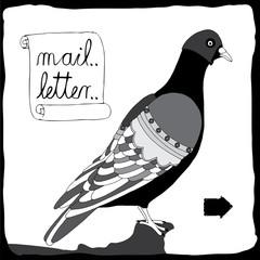 Mailman pigeon