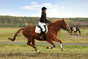 Młoda dziewczyna galopuje na koniu. - fototapety na wymiar