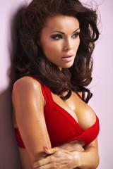 Wall Mural - Alluring female model wearing red bra