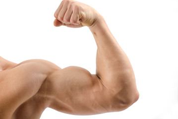 Close up on a bodybuilder biceps,shoulder,arm Wall mural