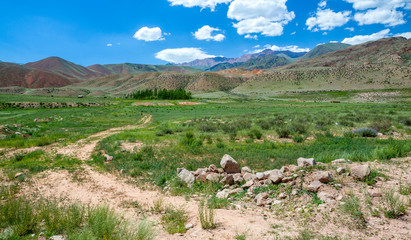 Fototapete - Country road in colorful Tien Shan mountains