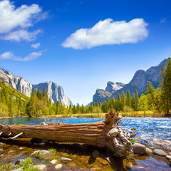 Foto auf Acrylglas Naturpark Yosemite Merced River el Capitan and Half Dome