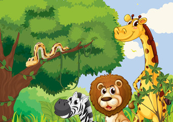 A forest with scary wild animals