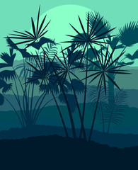 Exotic forest jungle leaves, grass and herbs wild untamed nature