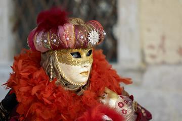 Venetian costume attends Carnival of Venice.