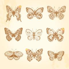 Set of vintage butterflies. 9 beautiful brown butterfly.