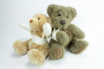 ted and ted