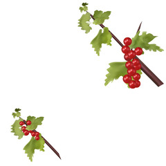 Red berries on green branch Christmas