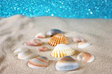 seashells on sand and defocused background