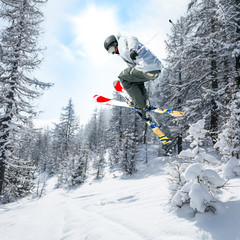 Fototapete - snow paradise
