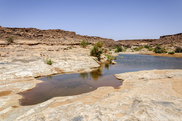 Morocco, Hamada du Draa, pond