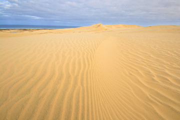 The scenic sand dunes in Te Paki region