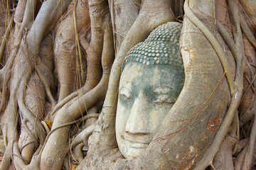 Ayuthaya Kingdom history, face of buddha