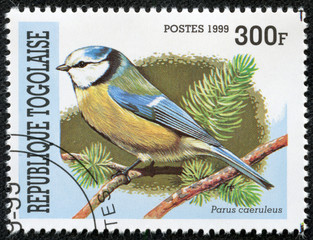 stamp printed in Togolese Republic shows bird