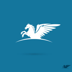 White pegasus sign