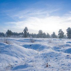 winter snowbound plain