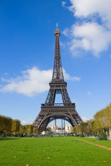 Eiffel Tower with green lawn, France