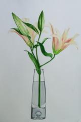 Lilly in vase