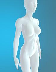 Donna corpo umano anatomia bianco