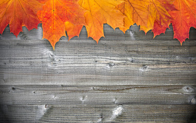 Autumn Foliage on wooden Background