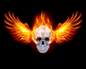 Fiery skull with fire wings.