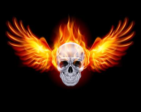Fiery skull with fire wings.
