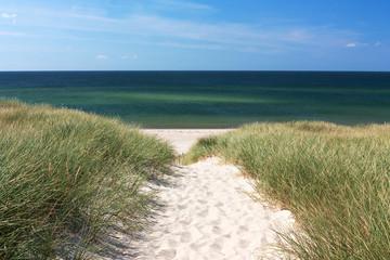 Fototapete - Weg zum Strand durch Dünen bei Kampen auf Sylt
