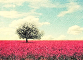 tree in a pink field