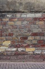 Wall Mural - Buntsandsteinwand mit Pionierpflanze