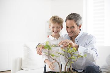 Türaufkleber Bonsai father teaching his son to take care of a bonsai