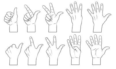 Hände, zählende (1,2,3,4,5)