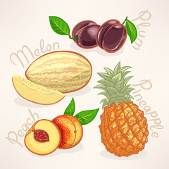 exotic fruits - 2