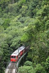 Red Brazilian Train Green Jungle Tijuca Rio de Janeiro