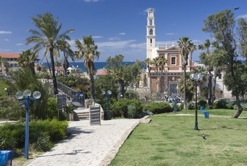 Jaffa hill