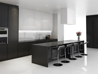 Contemporary minimal black and white kitchen