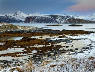 Wall Mural - Frozen fjord.Troms.Northern Norway.